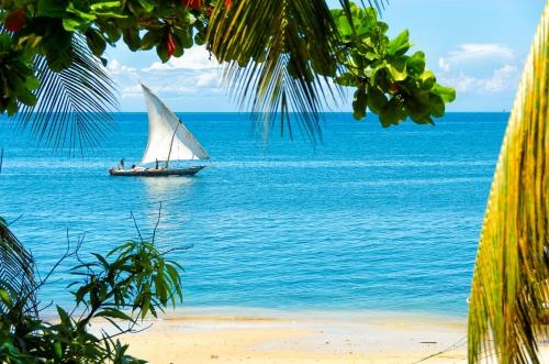 Tanzania Zanzibar Sailing Boat Crossing Beach